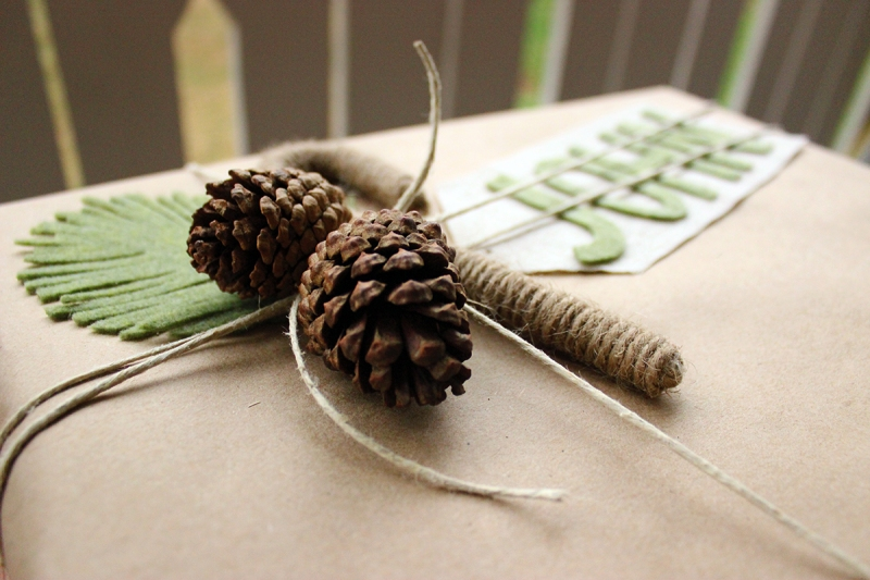 diy_pinecones2